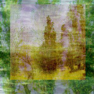 Galerie Ahlemann zeigt ein abstraktes Foto der Fotokünstlerin Claudia Maria Weiser auf dem in gelben, grünen, grauen und braunen Farbtönen eine Collage von vegetabilen Naturmotiven zu sehen ist.