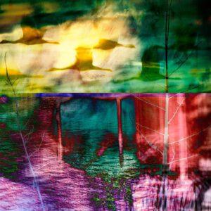 Galerie Ahlemann zeigt ein abstraktes Foto der Fotokünstlerin Claudia Maria Weiser auf dem in bunten Farben eine Collage von Naturmotiven zu sehen ist.