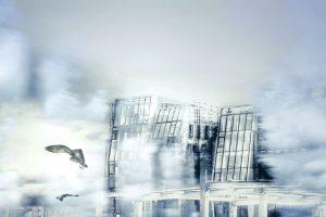 Galerie Ahlemann zeigt ein abstraktes Foto von Petra Jaenicke in überwiegend weißen und blauen Farbtönen, auf dem ein Vogel nach links aus dem Bild fliegt und im Hintergrund schemenhaft ein mehrstöckiges modernes Gebäude zu sehen ist.