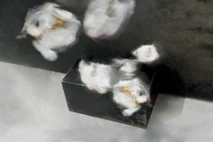 Galerie Ahlemann zeigt ein abstraktes Foto von Petra Jaenicke in überwiegend dunklen und hellen Grautönen. Der Hintergrund wird durch eine vom oberen zum unteren Drittel schräg verlaufende Kante geteilt, über der eine dunkelgraue Fläche ist und unterhalb eine hellgraue. Davor steht eine quaderförmige anthrazitfarbene Box aus der weiße Blüten, wie Ballons aufsteigen.