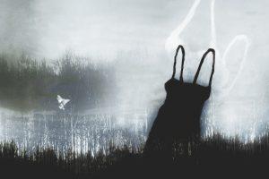 Galerie Ahlemann zeigt ein abstraktes Foto von Petra Jaenicke in schwarzen, weißen und grauen Farbtönen.Im Vordergrund ist ein schwarzes Trägerkleid zu sehen, während im Hintergrund eine graue, dicht stehende Baumreihe zu sehen ist, die nach rechts in einer weißen Nebelwand zu verschwinden scheint.