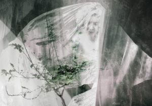 Galerie Ahlemann zeigt ein abstraktes Foto von Petra Jaenicke auf dem in Schwarz-weiß-Tönen unscharf eine Frauenfigur unter einem großen transparenten Schleier zu sehen ist. In der linken Hälfte des Vordergrundes ist ein junger Baum in grau-grünen Farbtönen zu erkennen.