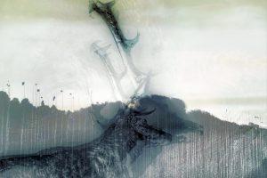 Galerie Ahlemann zeigt ein abstraktes Foto von Petra Jaenicke in grauen Farbtönen, auf dem der Hals und Kopf inklusive Geweih eines Hirsches schemenhaft zu erkennen ist. Der Hintergrund trennt sich ungefähr in der Mitte des Bildes in den unteren Teil, der einen massiv wirkenden Umriss eines Waldes zeigt und den grau-weißen Himmel im oberen Teil.