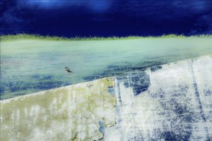 Galerie Ahlemann zeigt ein abstraktes Foto von Petra Jaenicke in überwiegend blauen und weißen Farbtönen. Das Bild zeigt vor einem abstrakten Hintergrund einen im Verhältnis zum Bild kleinen Vogelumriss, seitlich mit weit ausgebreiteten Flügeln., leicht links von der Mitte des Werkes.