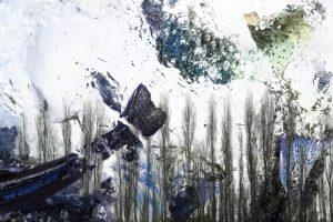 Galerie Ahlemann zeigt ein abstraktes Foto von Petra Jaenicke in überwiegend weißen, grauen und blauen Farbtönen, auf dem schemenhaft Fische bzw. Teile von Fischen zu erkennen sind. Der Vordergrund wird von Luftblasen geprägt, der Hintergrund durch eine Reihe nebeneinander stehender, schmaler, laubloser Bäume.