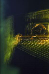 Galerie Ahlemann zeigt ein abstraktes Foto von Ralf Lindenau in der Kategorie Wahnbild in gelben und grünen Farbtönen vor einem dunklem Hintergrund