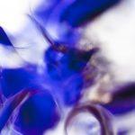 Galerie Ahlemann zeigt ein abstraktes Foto von Ralf Lindenau in der Kategorie Wahnmoves in blauen und hellen Tönen