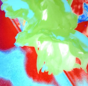 Galerie Ahlemann zeigt ein abstraktes Foto der Fotokünstlerin Nicki Garz mit einer abstrahierten Tulpenblüte in den überwiegenden Farben grün und rot.