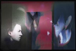 Galerie Ahlemann zeigt ein abstraktes Foto von Petra Jaenicke in überwiegend roten, schwarzen und grauen Farbtönen, auf dem abstrahierte Blüten und in der linken unteren Ecke ein Frauenprofil zu sehen sind.