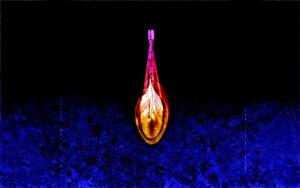 Galerie Ahlemann zeigt ein abstraktes Foto des Fotokünstlers Thomas Bienert auf dem vor einem schwarzen Hintergrund in der unteren Hälfte blaue, an Pflanzen erinnernde Muster und zentriert in der Mitte ein längliches Objekt in hellen Farben zu sehen sind.