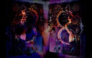 Galerie Ahlemann zeigt ein abstraktes Foto des Fotokünstlers Thomas Bienert auf dem in überwiegend violetten Farbtönnen abstrahierte pflanzliche Elemente gezeigt werden, die hälftig, wie gespiegelt angeordnet sind.